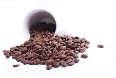 Free Spilled Beans Royalty Free Stock Photos - 17063078