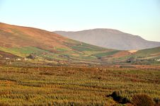 Free Autumn/Fall In The Valley, Kerry, Ireland Royalty Free Stock Image - 17064386
