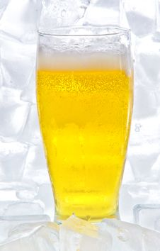 Free Beer Royalty Free Stock Images - 17067099