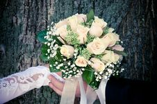 Free Bouquet Stock Images - 17070404