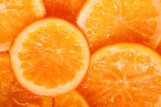 Free Ripe Oranges Royalty Free Stock Photo - 17070755