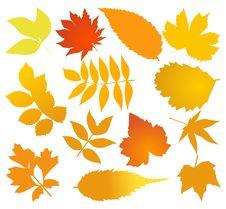Free Autumn2 Stock Photo - 17070880