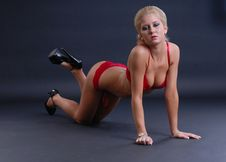 Sexy Young Woman In Red Lingerie Stock Photography