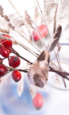 Free Autumn Berries And Artificial Bird Stock Image - 17075301