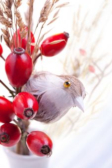 Autumn Berries And Toy Bird Stock Photos
