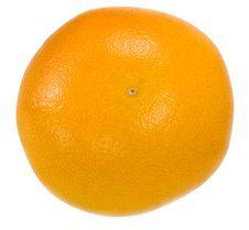 Free Grapefruit Royalty Free Stock Photo - 17076425