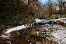 Free An Autumn Stream Stock Photos - 17078033