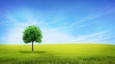 Free Landscape Stock Images - 17078684
