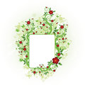 Free Summer Floral Frame Royalty Free Stock Images - 17088649