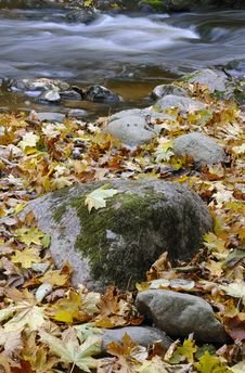 Free Wild River In Autumn Royalty Free Stock Image - 17083836