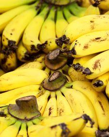 Free Bananas Stock Photography - 17087242