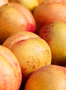 Free Peaches Royalty Free Stock Image - 17087256