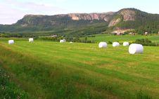 Free Beautiful Norway Nature Royalty Free Stock Photo - 17087525