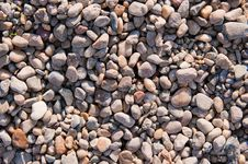 Free Beach Rocks Detail Royalty Free Stock Photography - 17087737