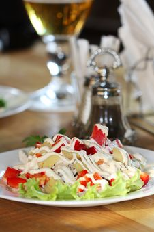 Free Appetizing Salad On A Plate Stock Images - 17093114