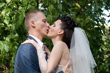 Free Kiss Of The Newlyweds Stock Photography - 17093142