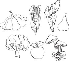 Set Of Vegetables Royalty Free Stock Photography