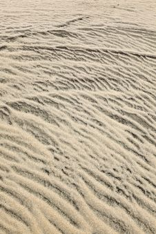 Free Wind Forms Structures In The Dunes At The Beach Royalty Free Stock Photo - 17094655