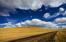 Free Road And Meadow Stock Photo - 17095730