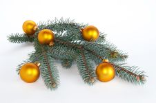 Single Branch Of Pine With Ornaments Royalty Free Stock Photo