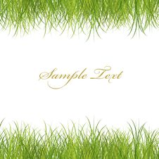 Free Green Grass Illustrate Stock Photos - 17096613