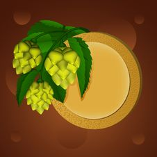 Green Hop And Beer Coaster Stock Image