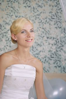 Free Portrait Of A Beautiful Bride Royalty Free Stock Photos - 17098768