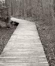 Free Boardwalk Stock Image - 1716781