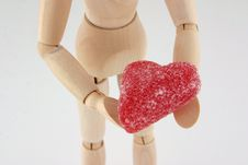 Free Manikin Heart Closeup Stock Photo - 1710380