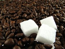 Free Coffe Beans Royalty Free Stock Images - 1711029