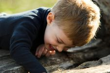 Free A Little Boy In The Park Royalty Free Stock Images - 1714139