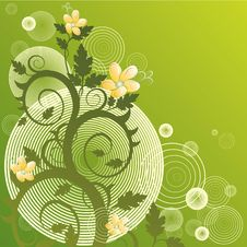 Free Vector Floral Background Royalty Free Stock Photo - 1718985