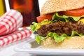 Free Hamburger Royalty Free Stock Photos - 17108358