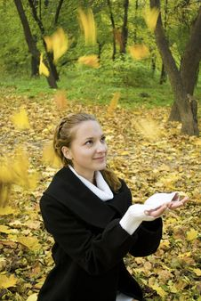 Free Happy Teen Girl Catches Leaves In Autumn Park Stock Photography - 17102932