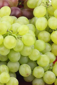 Free Green Grapes Stock Images - 17103084