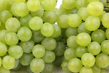 Free Green Grapes Royalty Free Stock Image - 17103566