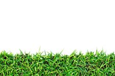 Free Fresh Spring Green Grass  With Clipping Path Stock Photos - 17105253