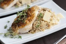 Free Chicken With Risotto Stock Photography - 17108352