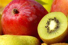 Mango And Kiwi. Royalty Free Stock Photo