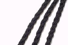 Free Black Wattled Cord Royalty Free Stock Photo - 17108535