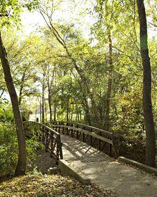 Rustic Foot Bridge In Autumn