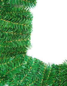 Free Christmas Pine Needles Frame  Isolated Stock Images - 17116004