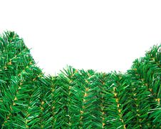 Green Pine Branch Close-up For Christmas Royalty Free Stock Photo