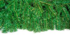 Free Christmas Framework With Green Pine Needles Stock Photography - 17116022