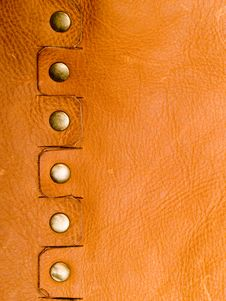 Free Leather Royalty Free Stock Photography - 17117137