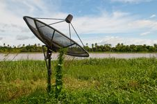 Free Green Plant Farming On Satellite Dish Over Blue Sky Royalty Free Stock Image - 17117876