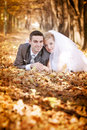 Free Bride And Groom Royalty Free Stock Photo - 17121225