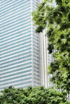 Free Skyscraper Stock Photos - 17122223