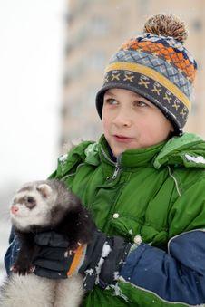 The Boy Holds A Polecat Royalty Free Stock Photo