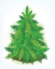 Free Christmas Tree Stock Photography - 17124932